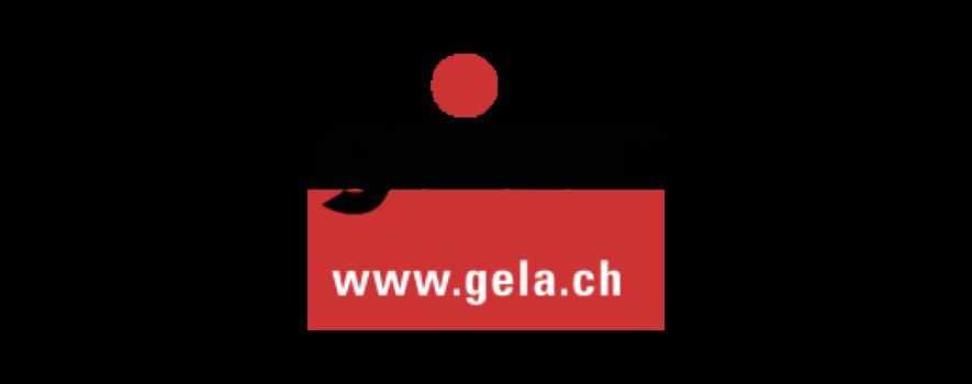 Logo geiser