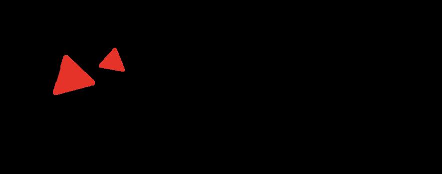 Logo schmidiger